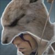 Assassin's Creed III Video Highlights Wolf Powers