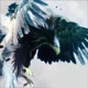 Assassin's Creed III Eagle Powers Revealed